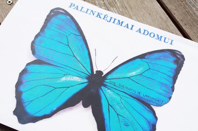 Žydros spalvos krikštynos drugelių tema