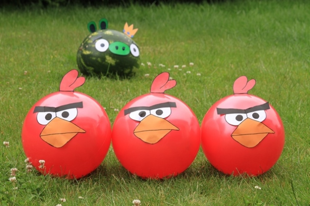 Teminiai berniukų gimtadieniai - angry birds