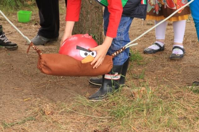 Angry Birds žaidimas - numušti dėžes