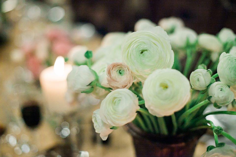 Balti viedrynai - vestuvės