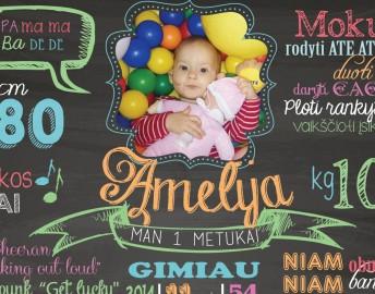 Pirmojo gimtadienio idėja – vaiko pasiekimų metraštis